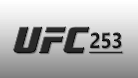 ufc 253